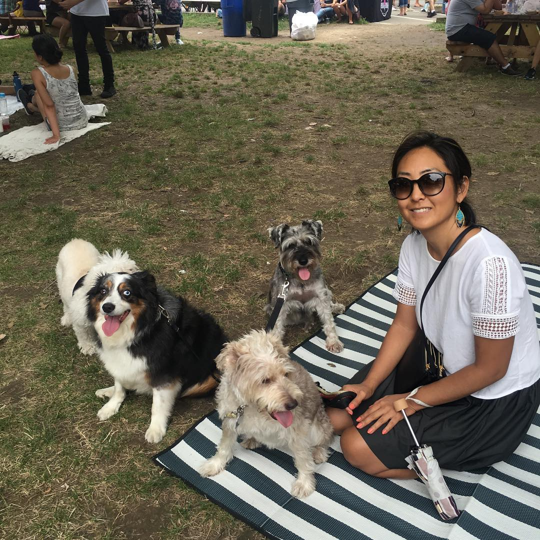 July Dog Social Calendar of Events NYC