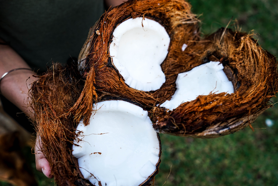 The Proven Benefits of Coconut Oil for Your Dog