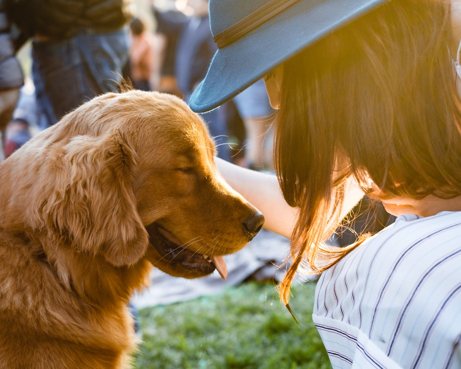 7 Money Saving Tips for Pet Supplies That No One Has Ever Told You