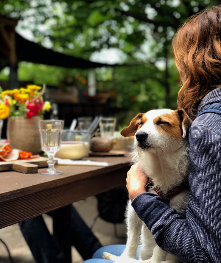 August 2019 Dog Friendly Events in NYC