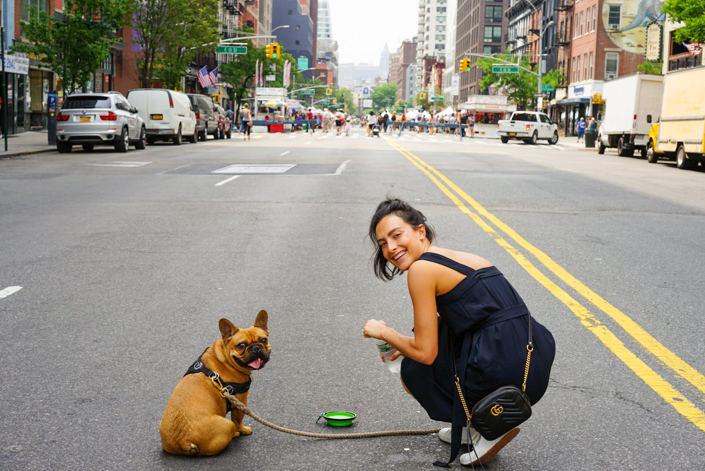 Best Ways to Enjoy the Fall Season in and Around NYC with Your Pup
