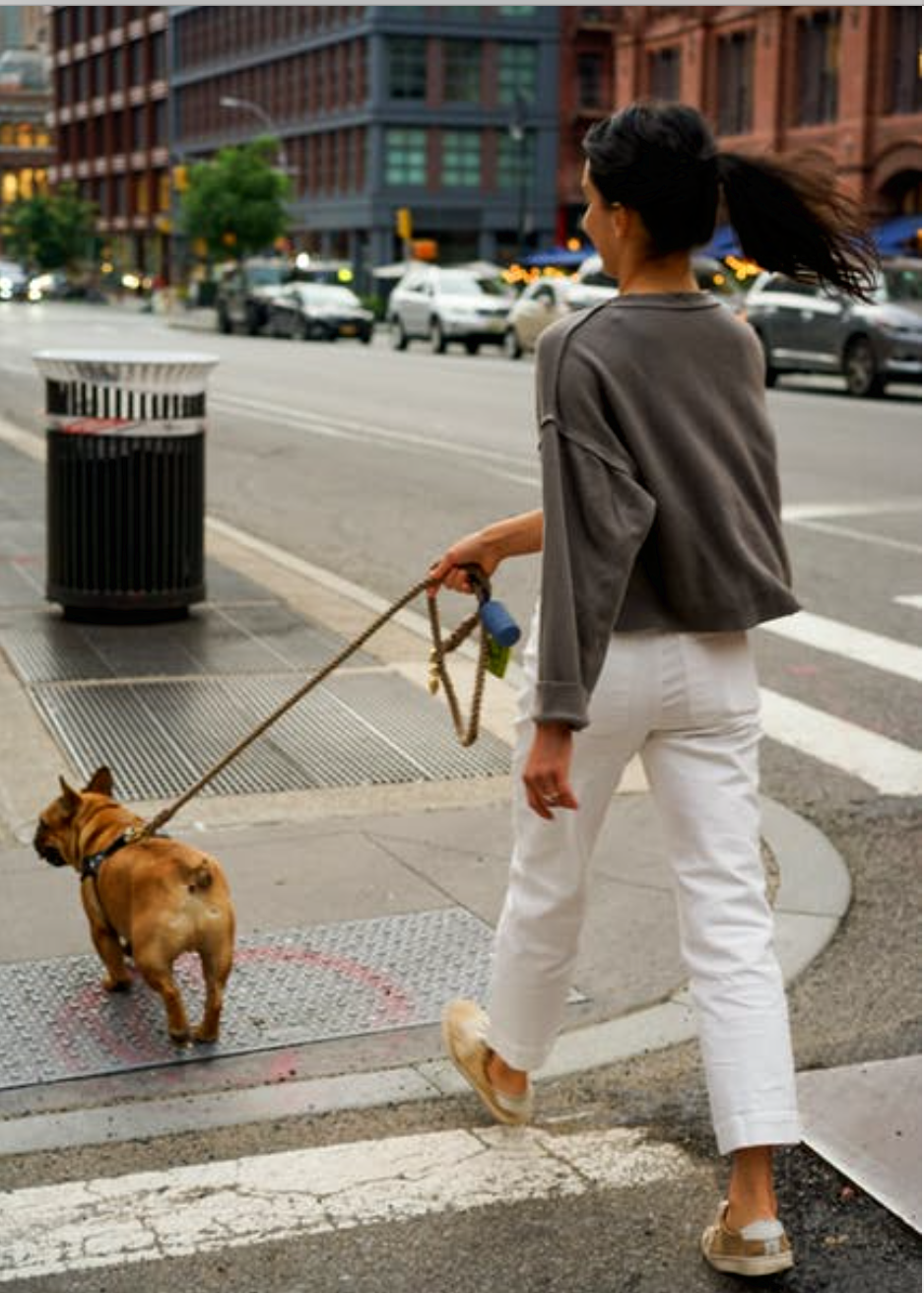 What to Do If You're Injured While Dog Walking