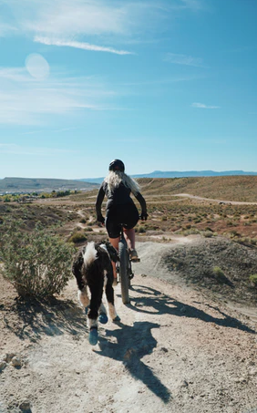 CrossFit With Your Dog: Is It a Good Idea?