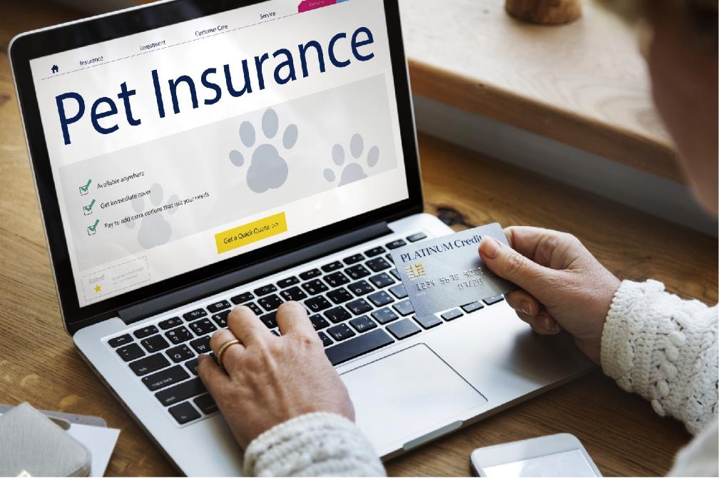 Understanding Pet Insurance: Does Pet Insurance Cover Shots?