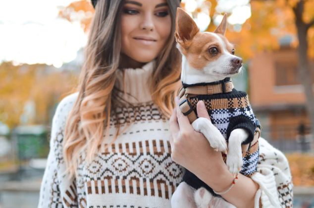 City Girl: Tips To Stay Stylish On Your Morning Dog Walk