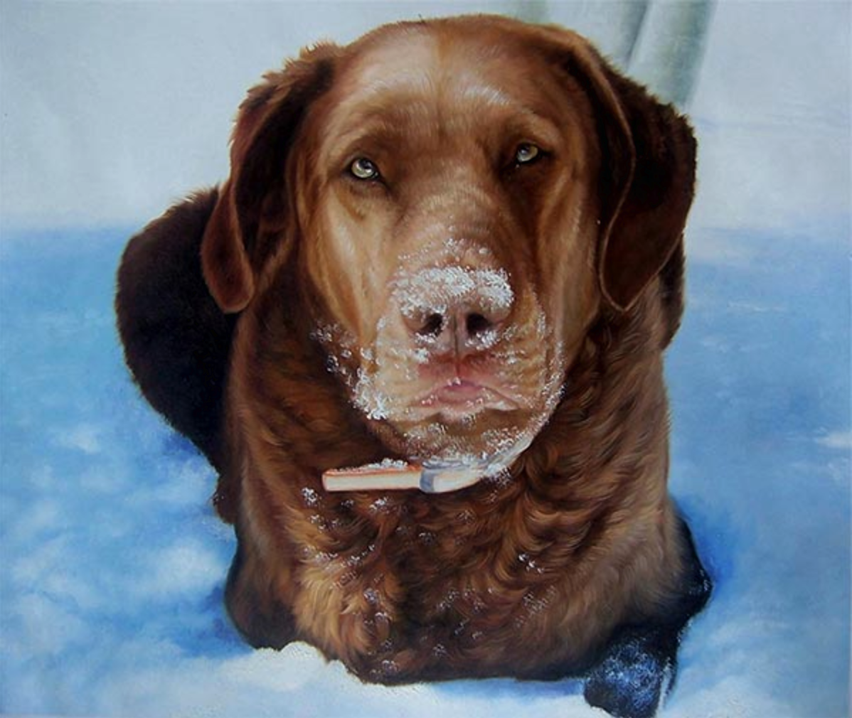 Art From Photographs and Other Creative Gift Ideas For Pet Lovers