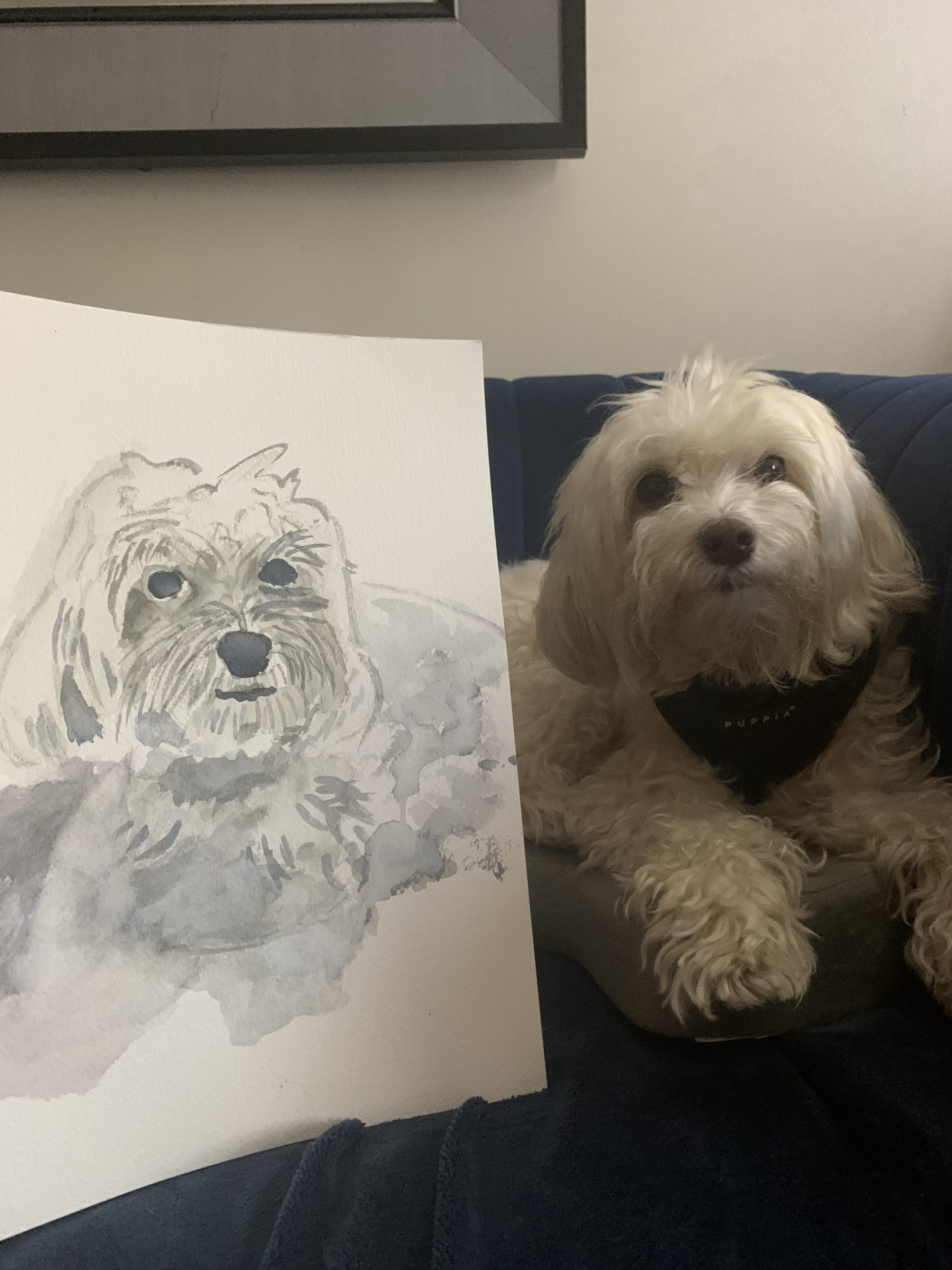 Feeling Creative? Here's A Guide To Draw Your Doghttps://www.newyorkdognanny.com/new-york-dog-nanny-site-blog/feeling-creative-heres-a-guide-to-draw-your-dog/