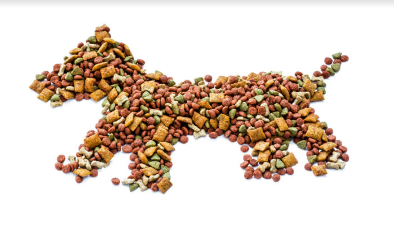 4 Reasons To Give Your Dog Hungry Bark & Similar Premium Quality Food