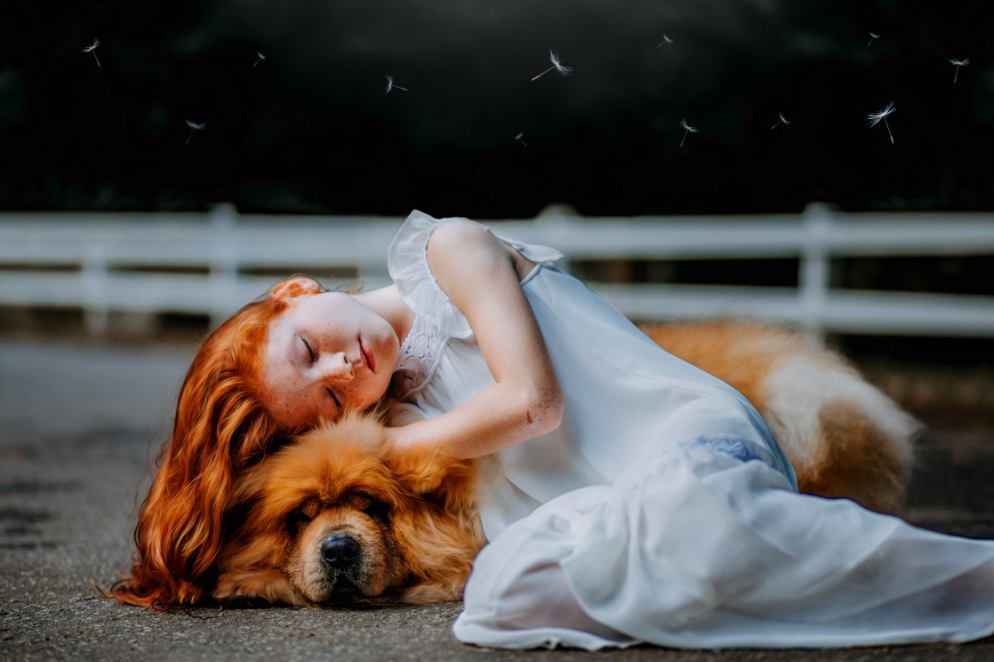 The Loss of a Pet: A Guide to Coping with Grieving Process