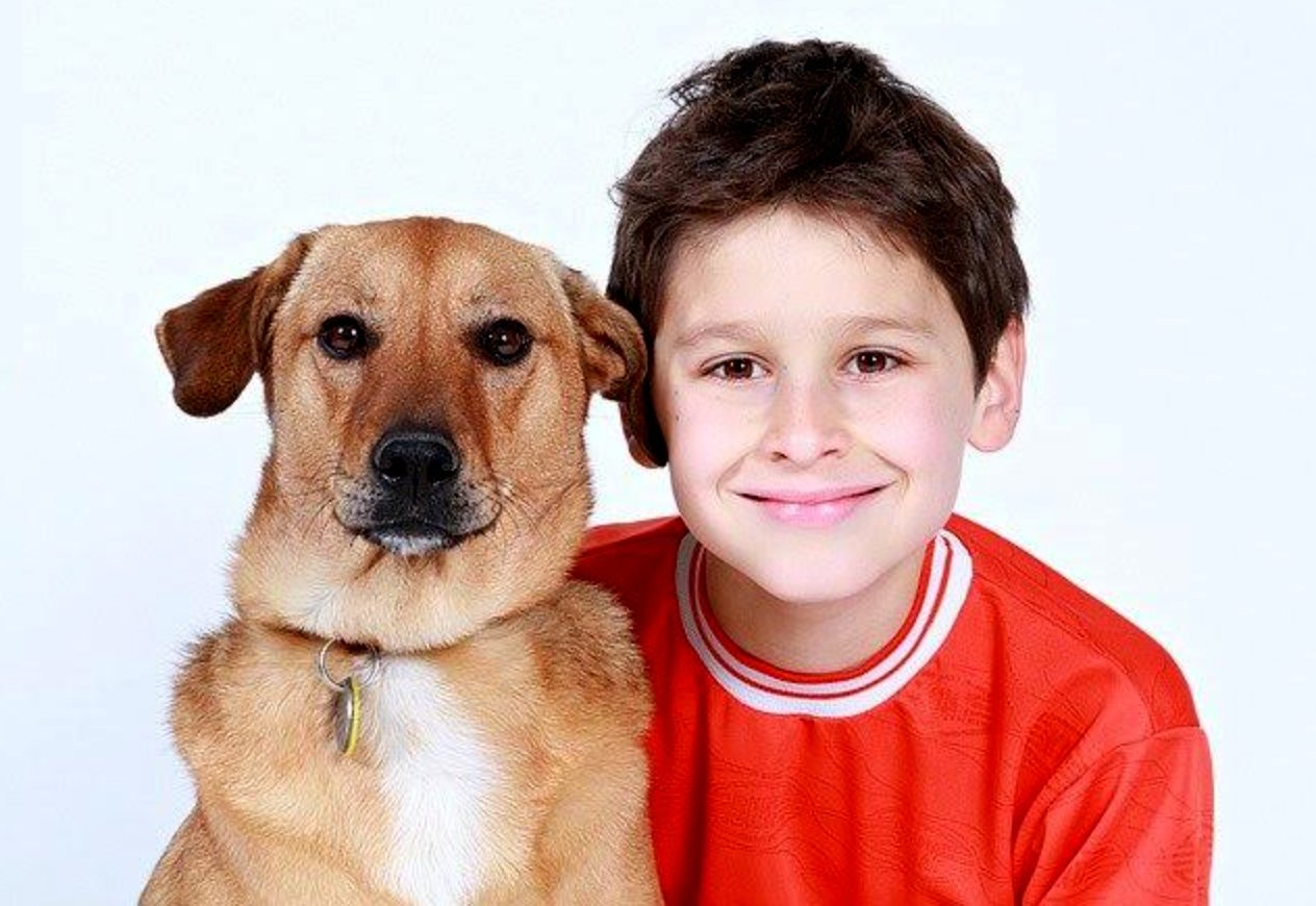 How to Share Out the Tasks When Caring for a Family Pet