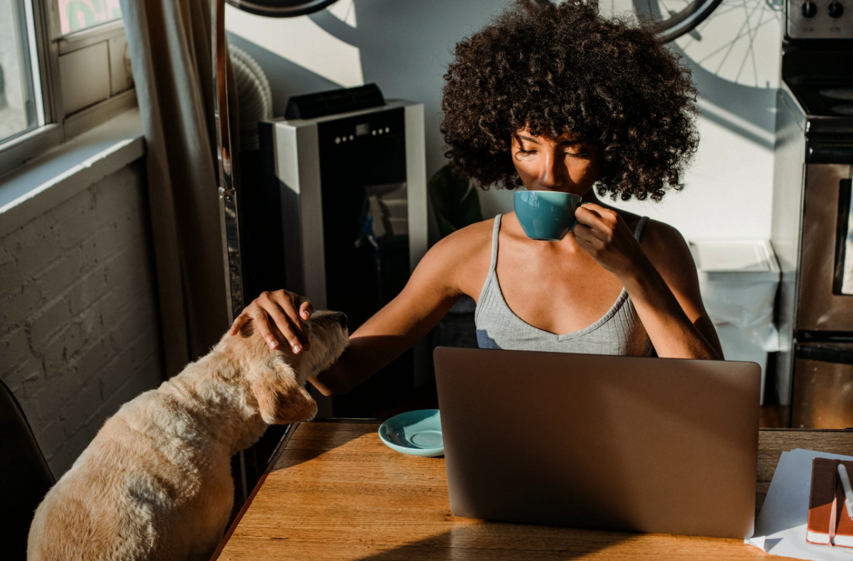 Working From Home With Your Pets: Merits, Demerits, & Tips To Consider