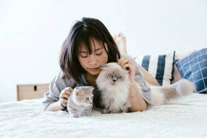 Easy Pets to Take Care Of While Studying At College