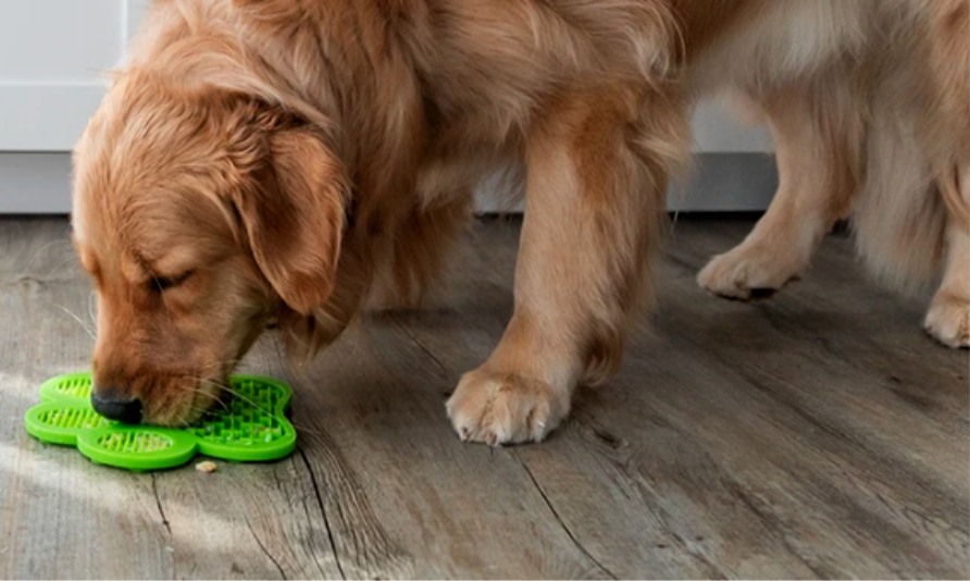 Keep Your Dog (and Yourself) Happy and Calm With a Licking Mat