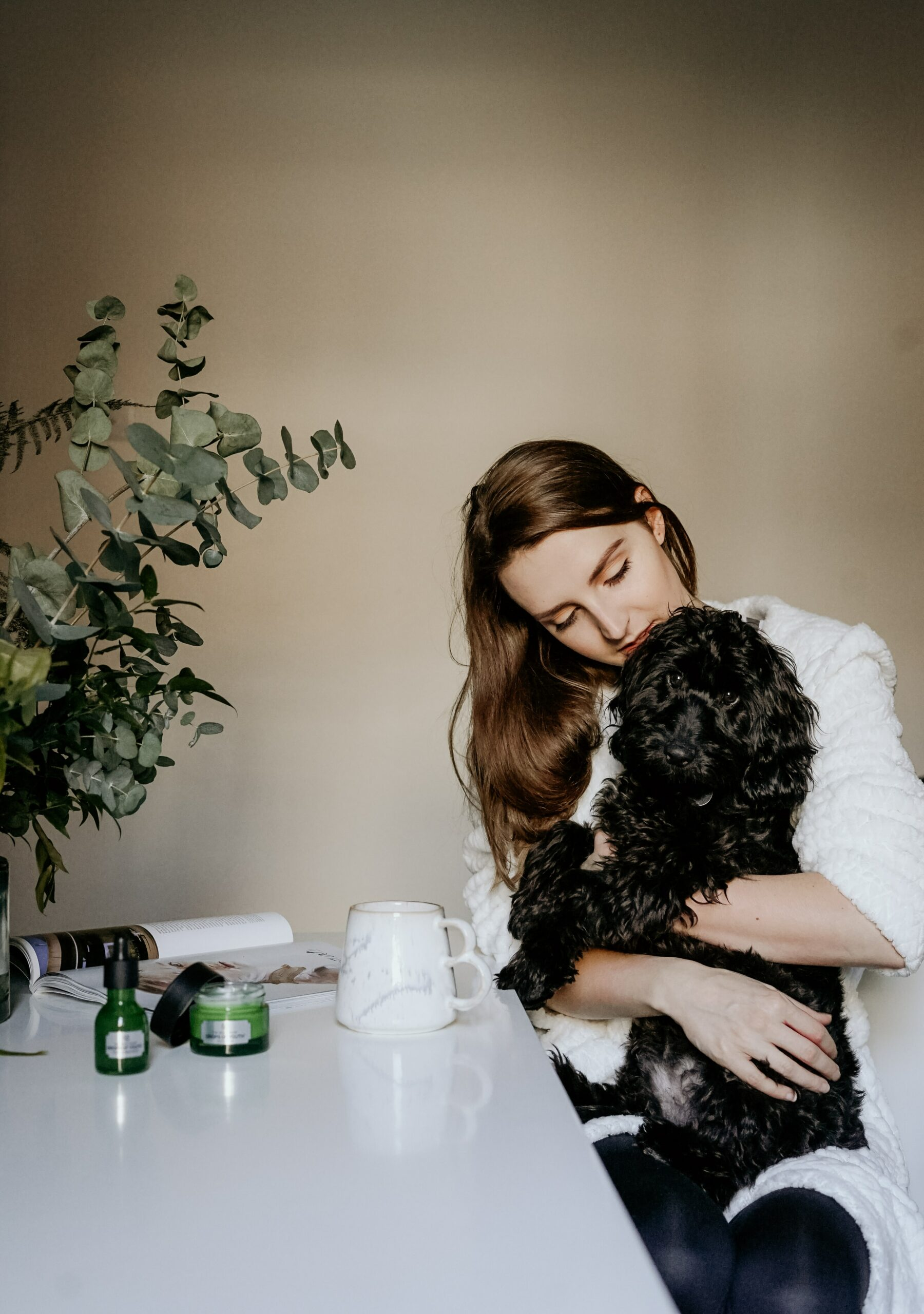 New Pet and New Business: Key Strategies to Making Both Work