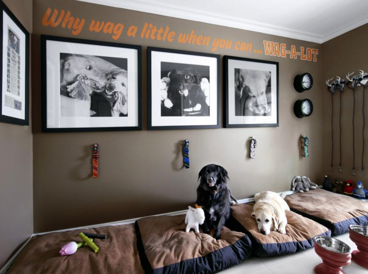 Pamper Your Furry Friend Creating the Perfect Pet Nook